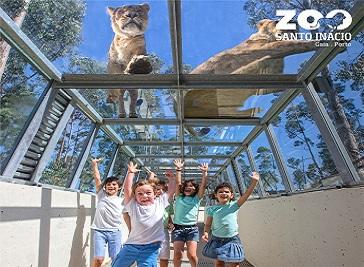 Santo Inácio Zoo in Porto